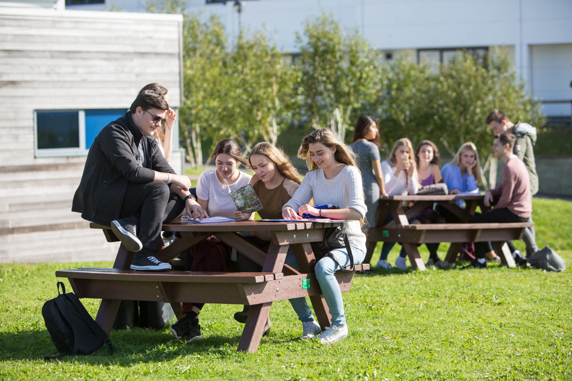 Students sat on benches