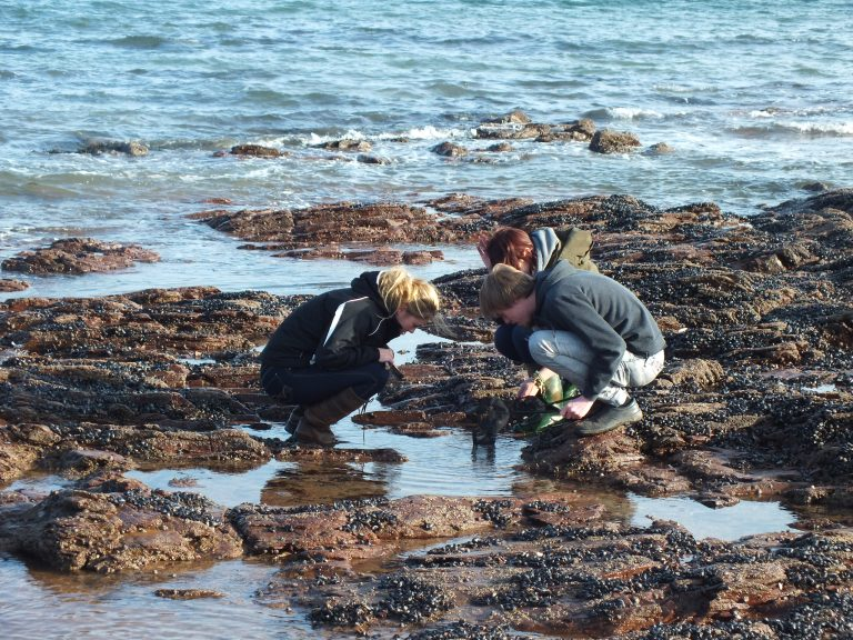 Students working in a rock pool.