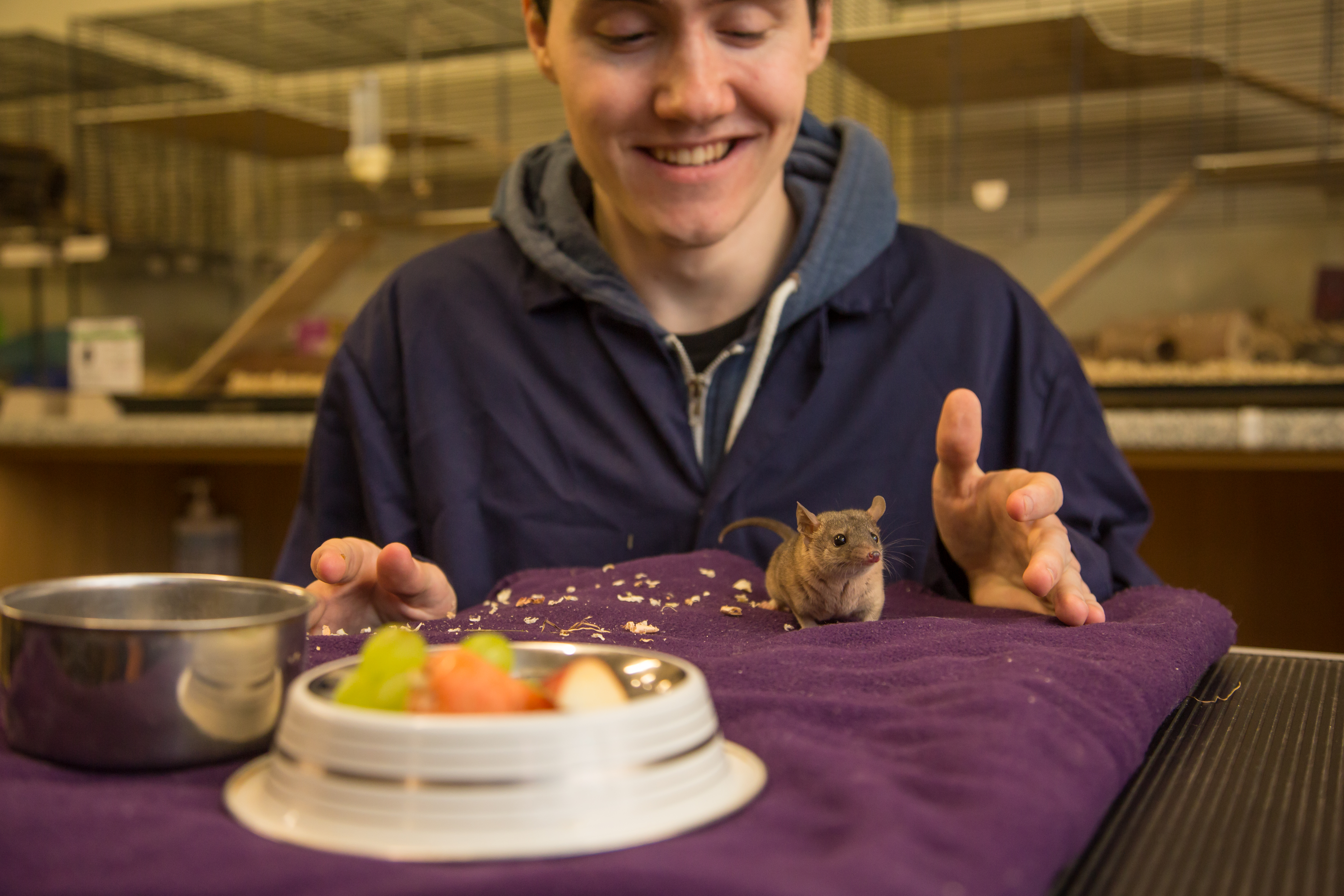 Student feeding small animal.