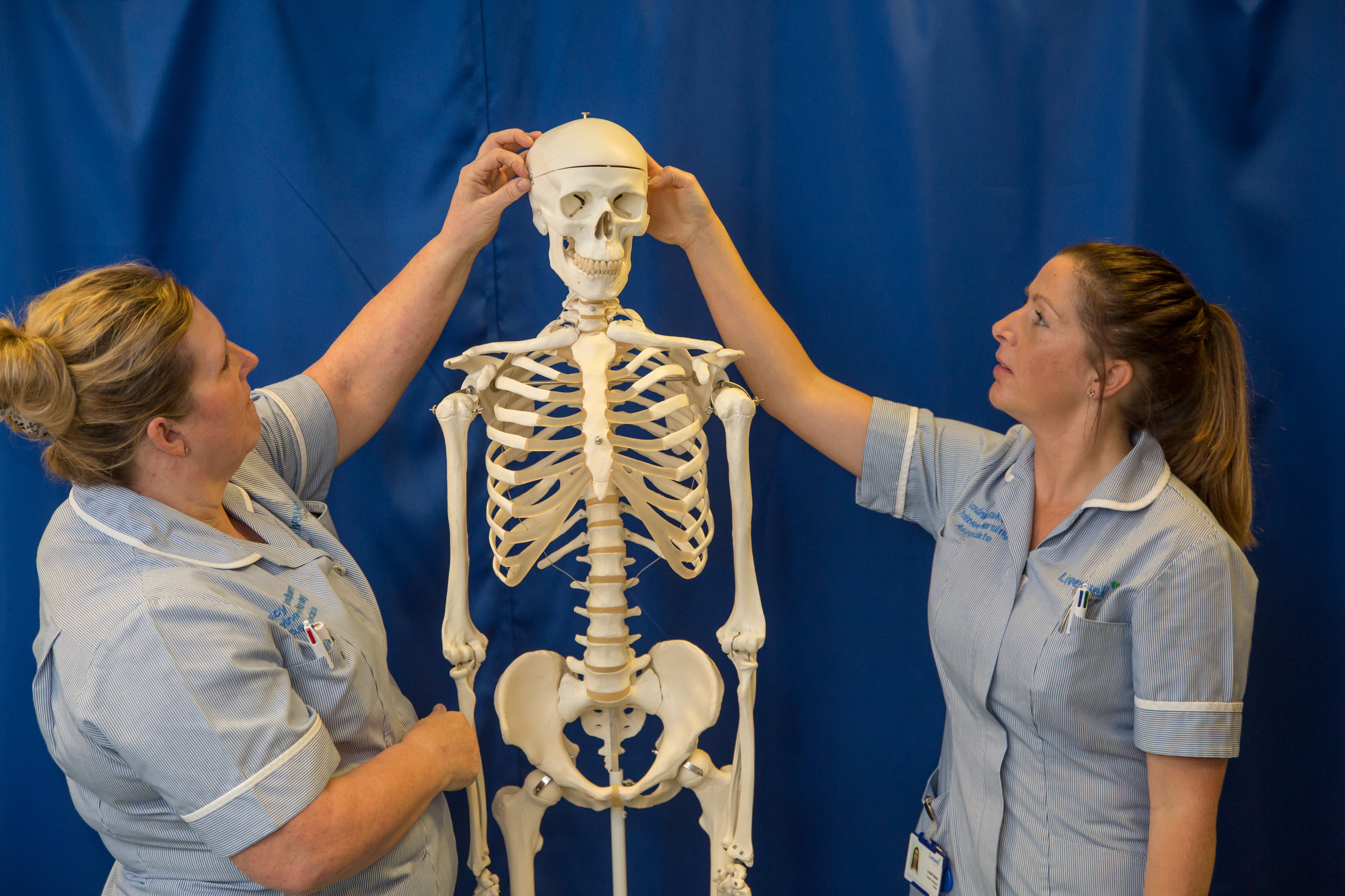 Higher education students with skeleton.
